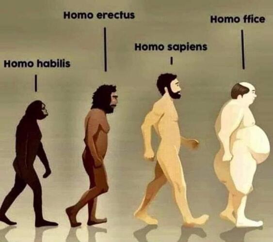 homo ffice