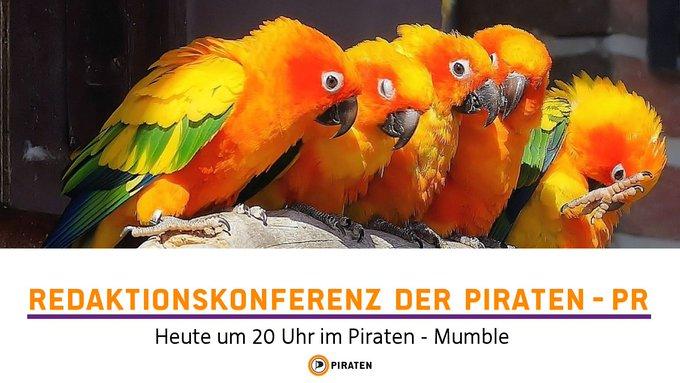 piraten-pr-mumble